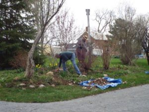 Cleaning South Welcome Bed 5 May 2015