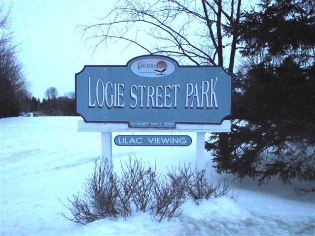 Dedicated Logie Street Park brightened