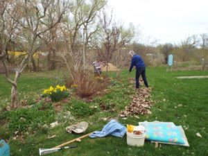 May 5 2015 Spring clean-up2