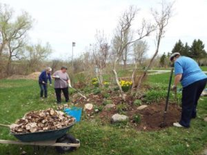 May 5 2015 Spring clean-up3